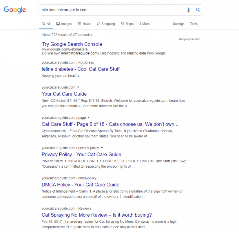 Google search for the site results